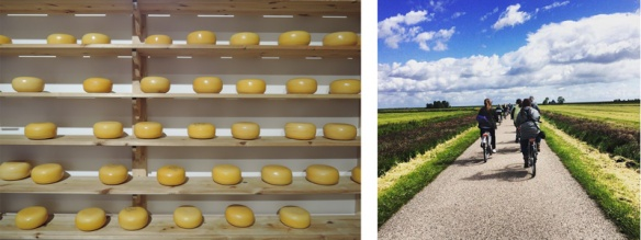 Cheese aging at Henri Willig cheesemakers, left, and biking through the Dutch countryside, right.